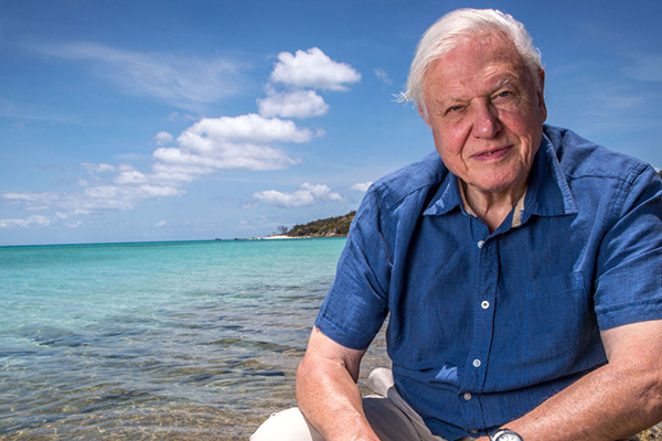 David_Attenborough and Chunk Clothing